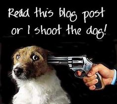 OK, not really. But check out http://www.shelterdoggies.com  for a free way to help shelter animals.  Please! They really do have a gun to their head!