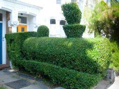 Topiary train created by Tim Bushe