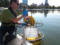 How to Overcome 5 Water Quality Monitoring Challenges New Operating System, Data Logger, Material Science, Service Program, Changing Jobs, Water Quality, Challenges, Blog, Materials Science