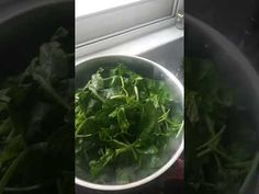 Φασόλια μαυρομάτικα με σπανάκι - YouTube Spinach, Vegetables, Youtube, Recipes, Food, Essen, Vegetable Recipes, Meals, Eten
