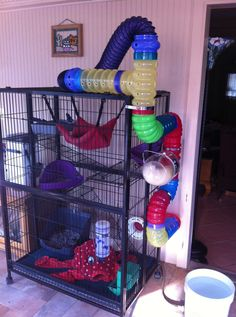 Ferret Central. This is the most awesome cage ever