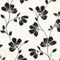 Buy Lorenzo Floral Wallpaper Black by Fine Decor from our Wallpaper range - Black/Charcoal, White, Floral - @ I Love Wallpaper stock a wide range of wallpaper including an extensive collection of fashionable wallpapers. Love Wallpaper, Designer Wallpaper, Wallpaper Ideas, Plains Background, Stunning Wallpapers, Front Rooms, Decorating Your Home, Floral Prints, Bathrooms