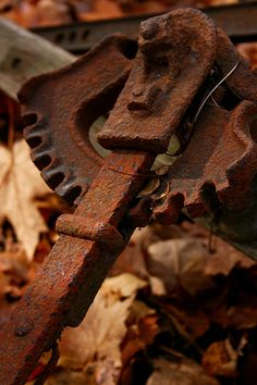 Rust   さび   Rouille   ржавчина   Ruggine   Herrumbre   Chip   Decay   Metal   Corrosion   Tarnish   Texture   Colors   Contrast   Patina   Decay   Gears