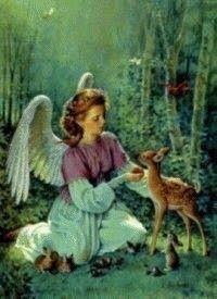 Ima egy állat gyógyulásáért ~ Angyalok fénye Doreen Virtue, In This Moment, Painting, Art, Angels, Art Background, Painting Art, Kunst, Paintings