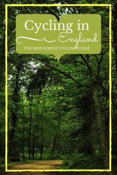 With over 100 miles of off-road family friendly trails, the best way to explore England's New Forest National Park and enjoy its natural wild beauty is by bike. Travel in Europe.