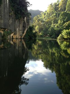 Welcome to The Haven Resort Hotel site. Surrounded by forests and lakes, our Ipoh luxury resort offers high hospitality standards in Malaysia. 5 Star Resorts, Ipoh, River, Outdoor, Outdoors, Outdoor Games, The Great Outdoors, Rivers