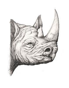 Rhino by rossatti on Etsy