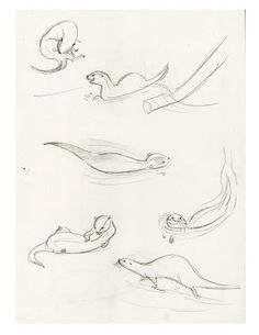 Cute Otter Drawing A strong mom was holding her