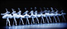 """Новая фотогалерея""""Vaganova Ballet Academy"""" / """"Академия Русского балета им. А.Я. Вагановой"""" подготовлена для вас! 191 фотогрфия продставлена вашему вниманию!"""