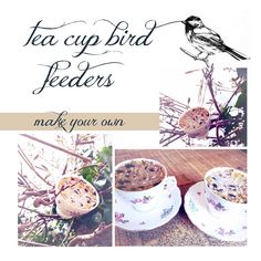 tea cup bird feeders, make your own instructions