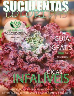 Echeveria, Download, Diy, Colorful Succulents, Flower Arrangements, Gardening, Garden, Leaves, Recipes