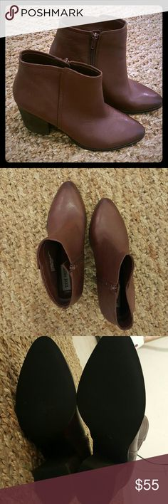 Steve Madden Booties! Burgundy color. Thick heels. 3 1/2 inches tall Steve Madden Shoes Ankle Boots & Booties
