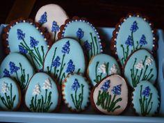 Grape Hyacinth Cookies....blauwe druifjes koekjes....ciastka z szafirkami