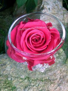 """Code PROMOFLASH 50% de réduction jusque 19h30 Rubrique """"fleurs naturelles stabilisées"""" www.artifleurs-fleurs-artificielles.com/boutique/fleurs-naturelles-preservees/"""