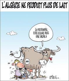 Dessin de ali dilem francais pinterest ali - Dessin vache humour ...