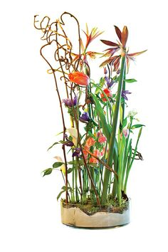 Flower arrangement by the Dutch master Rob Plattel