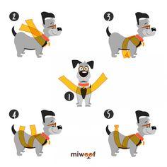 Jednoduchá metóda zbaví psa zo strachu z petárd a pomôže i pri bolestiach. Cute Funny Dogs, Funny Cats And Dogs, Vet Help, Dashund, Pastel Colour Palette, Mini Dachshund, Pet Shop, Shih Tzu, Dog Treats