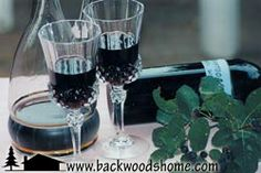Wonderful wilderness wines by Linda Gabris.  Wine making can be easy with these recipes for blackberry wine, blueberry wine, dandelion wine, and many more.