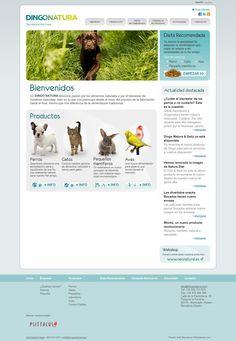 Si te gustan los #animales, te encantará la #tiendaonline dingonatura.com.  En ella no sólo puedes comprar comida para tu mascota, sino que puedes hacer tus consultas nutricionales.  El proyecto #web destaca por su sencillez y #usabilidad.