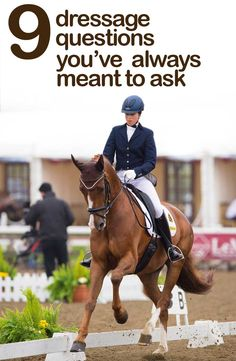 Are you struggling with an element of your dressage performance? Debby Lush, a List One British Dressage judge and trainer, offers solutions to your common dressage queries at http://www.horseandhound.co.uk/features/dressage-queries-474822#OmazX0Rrh06zvsZm.99