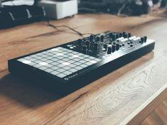 Dreadbox + Polyend Medusa Synthesizer