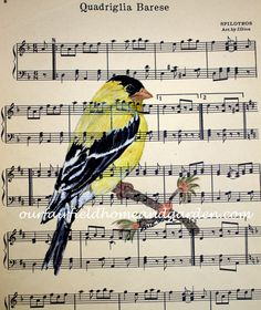 High quality print of a Goldfinch watercolor painting on vintage sheet music by Barb Rosen* print is of bird and vintage sheet music onlyPrint size 8 1/2 in wide and 11 3/4 in tall. Fits a standard 8 X 10 mat or frame nicely.