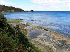 Eaglehawk Neck Tesselated Pavement - on the way to Port Arthur, Tasmania