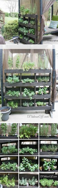 Gardening Herbs 43 Gorgeous DIY Pallet Garden Ideas to Upcycle Your Wooden Pallets - Need a cheap garden bed or planter that can be used either for vertical and horizontal gardening, but still looks good? Try these 43 pallet garden ideas. Herb Garden Pallet, Diy Herb Garden, Garden Planters, Pallet Planters, Pallet Gardening, Garden Trellis, Diy Planters, Gardening Tips, Garden Pond