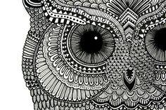 Owl Illustration 2.0 by Lucia Paul, via Behance