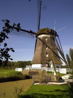 Mill near the river Rotte (The Netherlands. © Lansingerland 2011