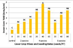 USDA NRCS - 4 way cover crop cocktails seem to perform best at the lowest cost. Nitrogen Cycle, Organic Weed Control, Crop Rotation, Permaculture, Agriculture, Cocktails, Cover, Craft Cocktails, Cocktail