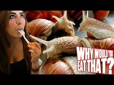 Why would you eat that? Because escargot is DE-LI-CI-OUS!!!!!