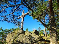ZWalk – Wanderungen rund um Zwettl im Waldviertel (www.zwalk.at/) » Panoramaweg Austria, Woodland Forest
