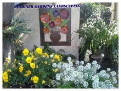 """See 31 photos and 15 tips from 4 visitors to Designer Gardens Landscaping. """"Anything you want in your garden they can do Landscaping, swimming pools,. Pretoria, Colorful Garden, Garden Landscaping, Orchids, Garden Design, African, Landscape, Gardens"""