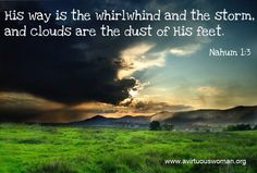 The dust of his feet