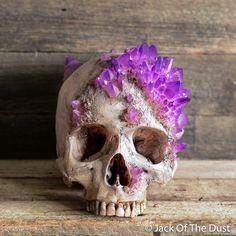 Jack of the dust skull