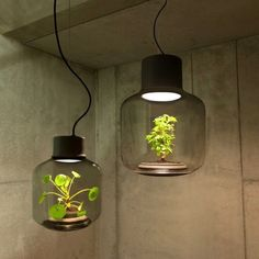 PlantLamp by WeLoveEames | design #blog #jmdinspireert