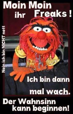 Moin Moin Cool Mugs, Wise Words, Funny Jokes, Comedy, Funny Pictures, About Me Blog, Lol, Cool Stuff, Memes