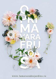 1 Martie a Venit si Aduce cu el - Soare, Zambete, Speranta si Noroc! #plante #primavara #lamaisondesjardins #gradina #flori #bucuresti #plants #flowers #garden #planting #bucharest #romania