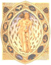 Cada signo rige un órgano o sistema del cuerpo físico. Por eso en la carta natal vemos cual o cuales necesitamos cuidar más, lo cual està asociado a un rasgo piscológico.