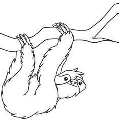 Realistic Drawing of Sloth Coloring Page | Color Luna