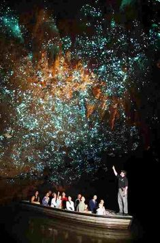完全に『天空の城ラピュタ』の飛行石洞窟!!ニュージーランドに存在するヒカリキノコバエ(土ボタル)洞窟「ワイトモ鍾乳洞」が美しい!!   コモンポスト