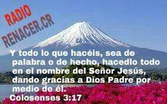16 de mayo de 2015  Versículo del Día  Y todo lo que hacéis, sea de palabra o de hecho, hacedlo todo en el nombre del Señor Jesús, dando gracias a Dios Padre por medio de él.Colosenses 3:17 RVR1960