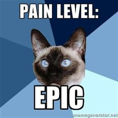 I've been there.  It's torture.   Good news is the U.K. has introduced studies showing pain, depression, everything wrong w our bodies is r/t inflammation.  Bring on the rx anti inflammatories!