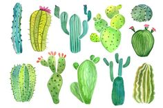 Watercolor cactus and succulent set - Objects