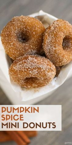 never too early for pumpkin! Enjoy bakery flavor at home with these baked Pumpkin Spice Mini-Donuts!It's never too early for pumpkin! Enjoy bakery flavor at home with these baked Pumpkin Spice Mini-Donuts! Savory Donuts Recipe, Mini Donut Recipes, Pumpkin Donuts Recipe, Homemade Donuts, Pumpkin Recipes, Delicious Donuts, Homemade Breads, Mini Donuts, Baked Donuts
