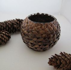 Up-cycled glass vase, candle holder, natural pine cone scales Nature Crafts, Fall Crafts, Holiday Crafts, Christmas Crafts, Christmas Ornaments, Christmas Christmas, Pine Cone Art, Pine Cone Crafts, Pine Cones