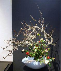 These photos were taken at the Ikebana Exhibition in Kyoto. Unique Flower Arrangements, Ikebana Flower Arrangement, Ikebana Arrangements, Flower Centerpieces, Wedding Centerpieces, Floral Artwork, Art Floral, Floral Design, Oriental Flowers