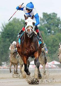 Strong Mandate 2014 Kentucky Derby hopeful!