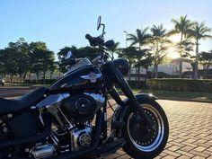 """559 curtidas, 5 comentários - BH Harley-Davidson (@bhharleydavidson) no Instagram: """"A Fat Boy® Special mostra o lado mais sombrio do modelo """"fat custom"""" original — inconfundível e…"""""""